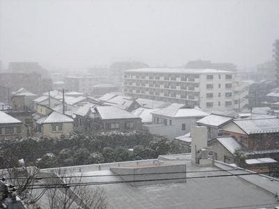 2012.02.29-1.jpg